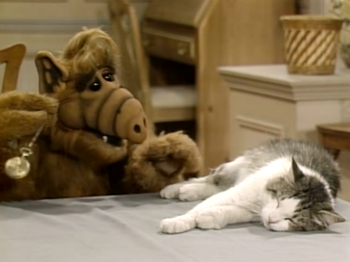 "ALF Reviews: ""Looking for Lucky"" (Season 1, Episode 3)"