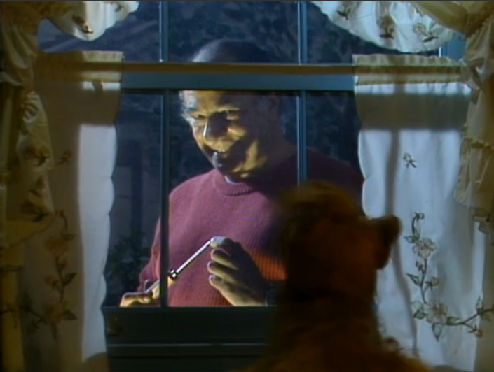 "ALF, ""Lookin' Through the Windows"""