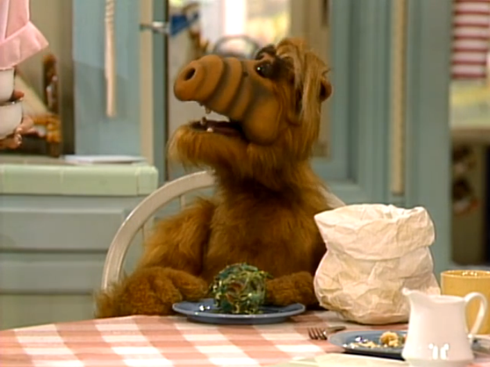 "ALF Reviews: ""La Cuckaracha"" (season 1, episode 24)"