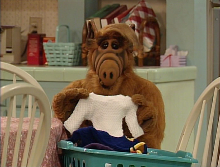 "ALF, ""Torn Between Two Lovers"""
