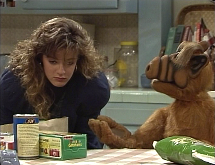 ALF Reviews: The 10 Best and 10 Worst Episodes
