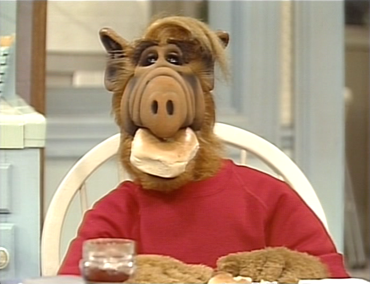 "ALF, ""He Ain't Heavy, He's Willie's Brother"""