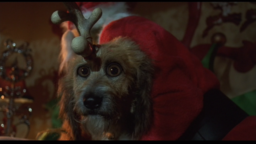 What Is The Dog S Name In The Grinch